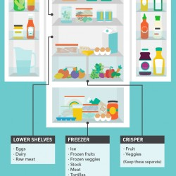 Refrigerator Maintenance – General Care & Tips
